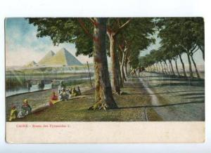 172309 EGYPT CAIRE CAIRO Road to Pyramids Vintage postcard