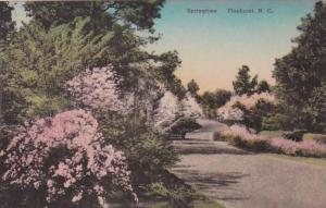 North Carolina Pinehurst Springtime Scene Handcolored Albertype