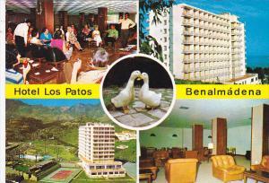 Hotel Los Patos Benalmadena Costa Del Sol Spain