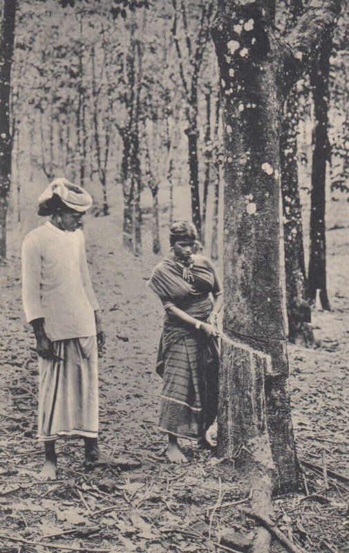 CEYLON , 00-10s ; Rubber Tapping