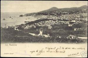 portugal, MADEIRA, Panorama (1905)