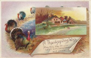 AS: Clapsaddle ; Thanksgiving , 00-10s ; #1