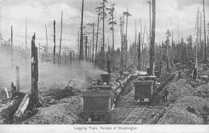 Logging Train Forest of Washington 1910c postcard