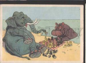 118869 CHESS Elephant Hippopotamus by BAZHENOV Old postcard