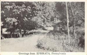 Ephrata Pennsylvania~Gravel Road Through Trees~1920s Sepia~Greetings Postcard