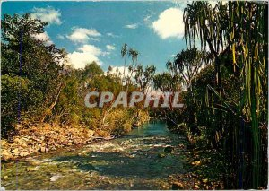 Postcard Modern Riviere Baraoua of West Coast New Caledonia