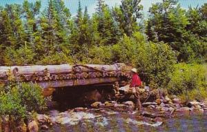 Canada Quebec St Georges de Beauce Brook Fishing