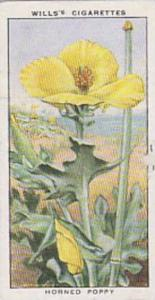 Wills Vintage Cigarette Card The Sea-Shore No 47 Horned Poppy  1938