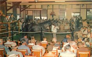 Keenland Race Course 1950s Yearling Sales Lexington Kentucky Tichnor 9837