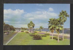 Bayshore Drive,Tampa Bay,FL Postcard