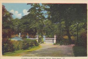A Scene In The Public Gardens, HALIFAX, Nova Scotia, Canada, 1930-1940s
