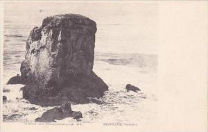 Washington Moclips Rock At Grennville