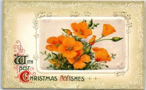 1910s California Poppy Flower Postcard With Best Christmas Wishes Winsch Back