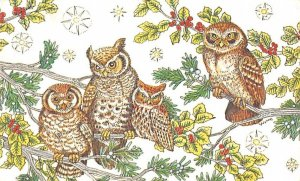 Four Owls in Pine & Holly Trees Unused