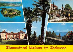Blumeninsel Mainau im Bodensee Island Garden Flowers Lake Boats