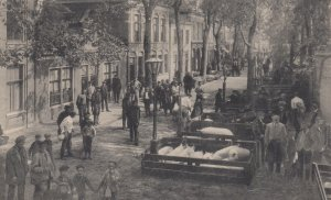 PURMEREND , Netherlands , 1918 ; Varkenmark