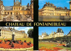 France Chateau de Fontainebleau L'Escalier du Fer a Cheval Carpes Parc