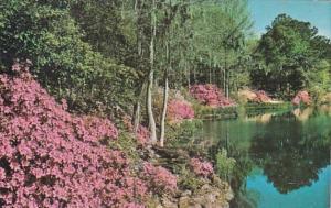 Alabama Mobile Bellingrath Gardens Iisle-Aux-Oles River