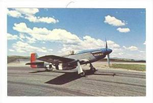 AIRPLANE: North American P-51D Painted for Air Force 1980 c.