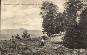Harrietstown NY Greetings From highland Lodge c1910 Postcard #1