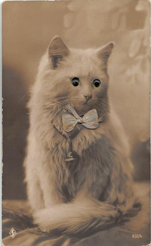 F25/ Interesting RPPC Photo Postcard c1920s Glass Eye Cat Bowtie Cute 25