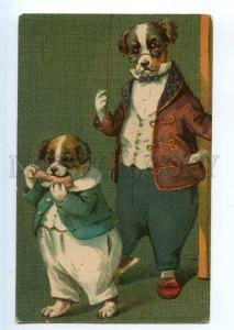 234762 Dressed DOG Terrier by THOMPSON Vintage TSN #319-7 PC