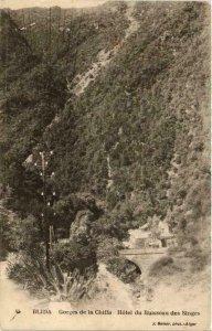 CPA AK Geiser 45 BLIDA Gorges Chiffa Hotel Ruisseau Singes ALGERIA (764216)