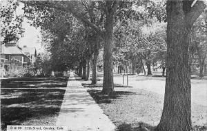F28/ Greeley Colorado Postcard c1910 12th Street Homes