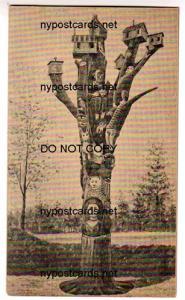 Cayuga Co Totem Pole, Barbers Corners, Scipioville NY