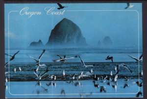 Haystack Rock and Seagulls,Oregon Coast BIN