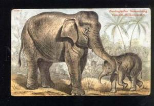 047459 Family of Indian ELEPHANT Mom & Son vintage