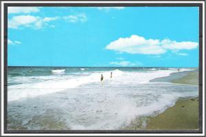 Massachusetts, Cape Cod Beach National Seashore - [MA-660]