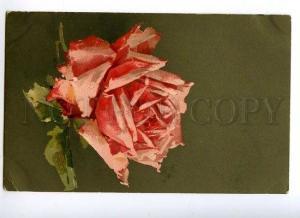 129145 HUGE ROSES Flower by C. KLEIN Vintage Colorful PC