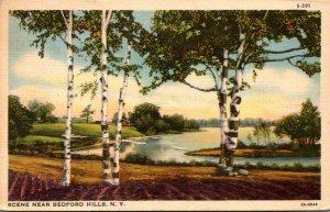 New York River Scene Near Bedford Hills 1937 Curteich