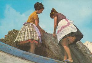 Portugal Upskirt Risque Fashion Postcard