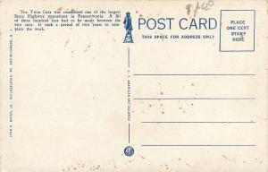 Towanda Pennsylvania~Wyalusing~Twin Cuts on Sullivan Trail~1920s Postcard