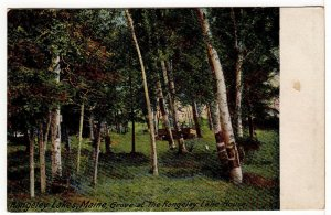 "Rangeley Lakes MAINE ""Grove of the Rangeley Lake House Undivided Postcard"
