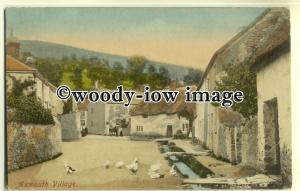 tp0552 - Devon - Early View of Geese in the Lane of Axmouth Village - postcard