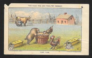 VICTORIAN TRADE CARD Dr Haas Hog & Poultry Remedy 'Yum Yum' Pig 2 Chickens c1882