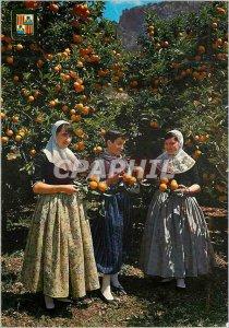Postcard Modern Mallorca Tipica Between orange trees
