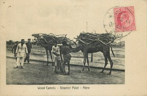 Yemen Aden Steamer Point wood camels colonial occupation postcard