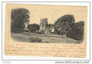 Muckross Abbey, Killarney, Ireland, pre-1907