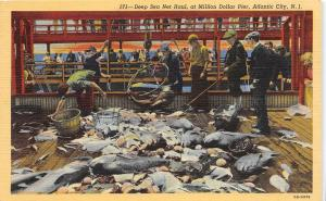 E4/ Atlantic City New Jersey NJ Postcard Linen Deep Sea Net Haul Pier Fishing