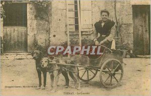 COPY Thenay Courier Car has dogs