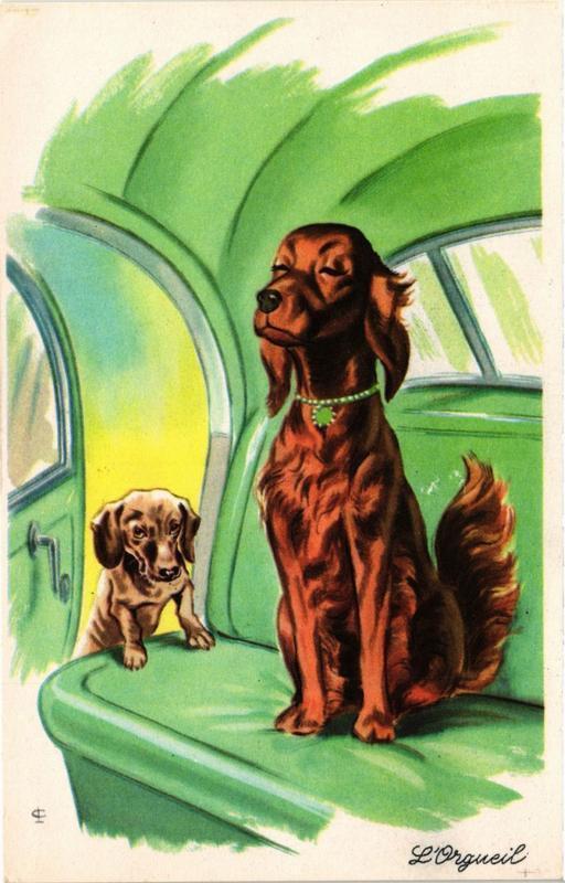 CPA Irish Setter and Dachshund DOGS (727741)