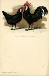 Chicken Hen Rooster, Spanier, Espanioles (1910s) No. 31