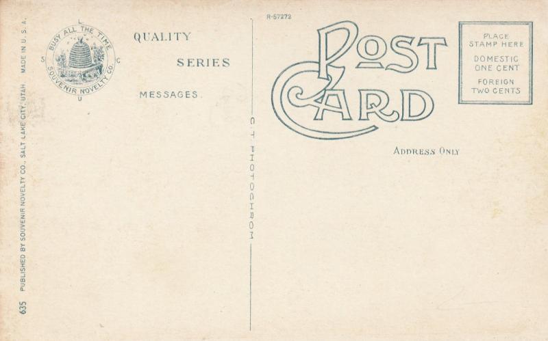OGDEN , Utah, 1900-1910's; Washington Avenue