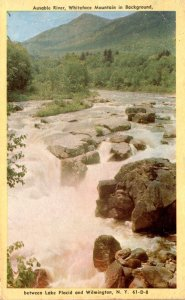 New York Adirondacks Ausable River Between Lake Placid and Wilmington 1952 De...