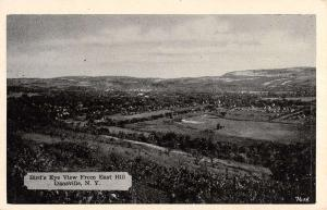 Dansville New York Birdseye View From East Hill Antique Postcard K18464