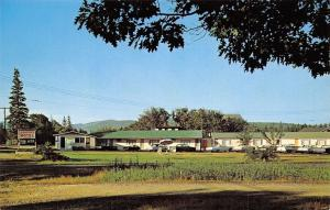 Bar Harbor Maine~Barton's Motel~1950-60s Cars~Postcard